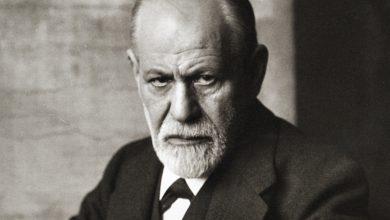 بیوگرافی فروید