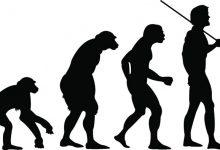 روانشناسی تکاملی