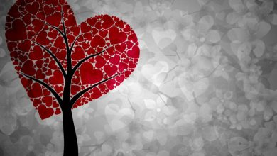 نظریه عشق استرنبرگ: انواع عشق از دیدگاه علمی
