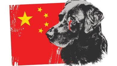 دربارهی جشنوارهی یولین در چین