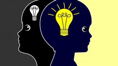 آیکیو یا بهره هوشی ، ارثی است یا اکتسابی؟
